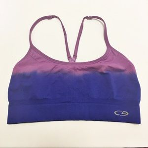 Champion Blue and Purple Ombré Sports Bra